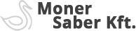 Moner Saber